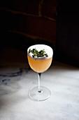 Ein Cocktail dekoriert mit Kräutern vor dunklem Hintergrund