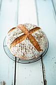 Weizenmischbrot im Topf gebacken (Hefeteig)