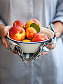 Apricots and peaches in an enamel bowl