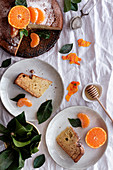 From above appetizing sweet cake and ripe orange mandarin cut and served on white plates on table decorated with plants
