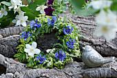 Kränzchen mit Kornblumen und Pfeiffenstrauch-Blüten