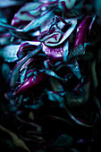 Sliced red cabbage (close-up)