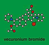 Vecuronium bromide muscle relaxant drug, illustration