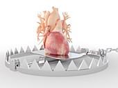 Heart in a bear trap, illustration