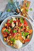 Tomatoe salad with croutons and mozzarella