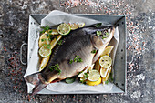 Fresh carp in a dish with lemon and lime