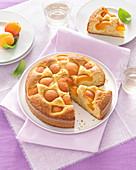 Aprikosen-Paranuss-Kuchen