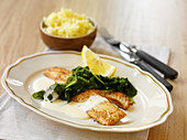 Perch fillet with spinach and white wine sauce