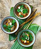 Chinesische Gemüsesuppe mit Tofu