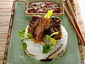 Braised short rib with rice and shiitake