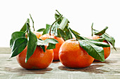 Fresh tangerines with leaves against a white background