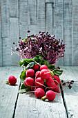 Fresh radishes and fresh radish sprouts