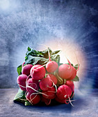 A bunch of radishes against a blue background