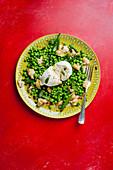 Burrata with pea salad