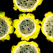 A sliced yellow pitahaya against a black background