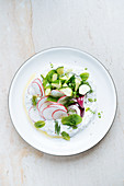 Salad of thin sliced radish ripe zucchini red onion and herbs with sour cream
