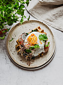 Vegeterian waffle with fried egg and radish