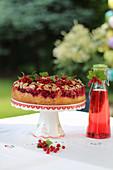 Redcurrant cake on a garden table