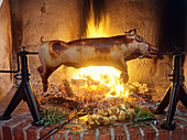 A suckling pig on a rotisserie over a fire