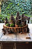 DIY-Dekoration mit Zapfen und Moos auf Aststücken und Holzscheibe