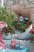 Weihnachtliches Topf-Arrangement mit Scheinbeeren, Teppich-Fetthenne 'Fuldaglut', Tripmadam und Herbstsegge, Kugeln, Stern und Zapfen als Dekoration