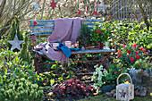 Weihnachtlich dekorierter Sitzplatz im Garten, Windlicht und Korb mit Zapfen