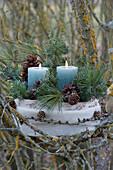 Gesteck mit Kerzen, Zapfen und mit Zweigen von Kiefer und Wacholder im Geäst