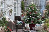 Weihnachtsterrasse mit geschmückter Nordmanntanne als Weihnachtsbaum, Korbsessel und Feuerschale