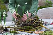 Schneeglöckchen in Kranz aus Zweigen : Frau setzt Schneeglöckchen in Moos in Kranz aus flechtenbewachsenen Zweigen, Birke, Weide und Gräsern