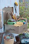 Blechdose zweckentfremdet als Ordnungshelfer: Samentüten, Etiketten, Rupfenband und Tasse mit Hauswurz