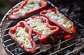 Grilled red pointed peppers filled with feta cheese and rosemary on a barbecue