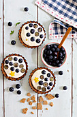 Cheesecake tartlets with blueberries