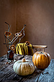Pumpkin on the Autumn table