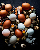 Mixed Egg variety