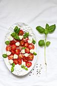 Tomato salad with mini mozzarella and basil