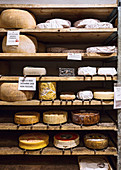 Various types of cheese on wooden shelves