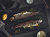 Geräucherte Forelle mit Kräutern auf Ofenblech