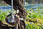 Kleiner Osterhase in Suppenkelle in Kranz aus Zweigen