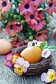 Osterei in Nest, dekoriert mit Blüten von Hornveilchen