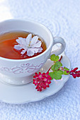 A cup of tea garnished with cherry blossom and redcurrant flowers