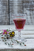 Glass of chokeberry juice, pasque flower (Pulsatilla vulgaris), willow catkins and primulas