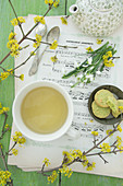 Snowdrops, cornelian cherry, spring tea and pistachio biscuits on sheet music