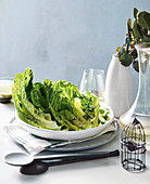 Cos lettuce with creamy herb dressing