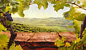 View over wooden table in olive Autumn vineyard
