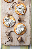 Winter Chanterelle and stilton pate on savoury biscuit