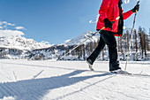 Switzerland, Engadin, cross-country skiing at Lake Sils