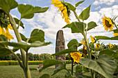 Gollenstein bei Blieskastel und Sonnenblumenfeld, Saarland, Deutschland