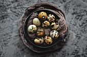 Fresh quail eggs on gray background