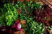 Salat variationen