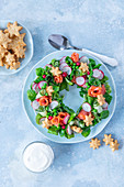 Salad in form of wreath with salmon, cucumber, radish, peas, corn and cheese cookies stars
